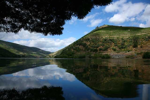 Douro-Valley.jpg